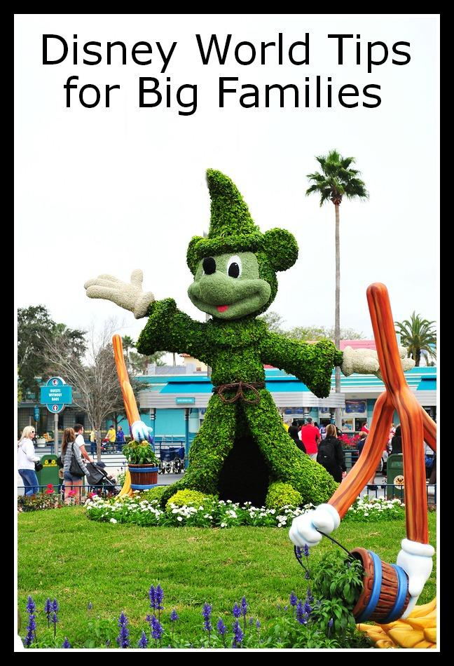 disney_world_tips_for_big_families